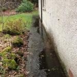 Flooded Garden Path
