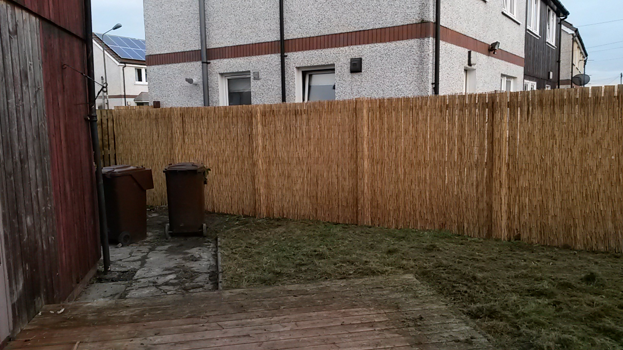 Bamboo screen along existing fence